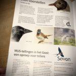 2020 De Korhaan | Even voorstellen | doortje.nl