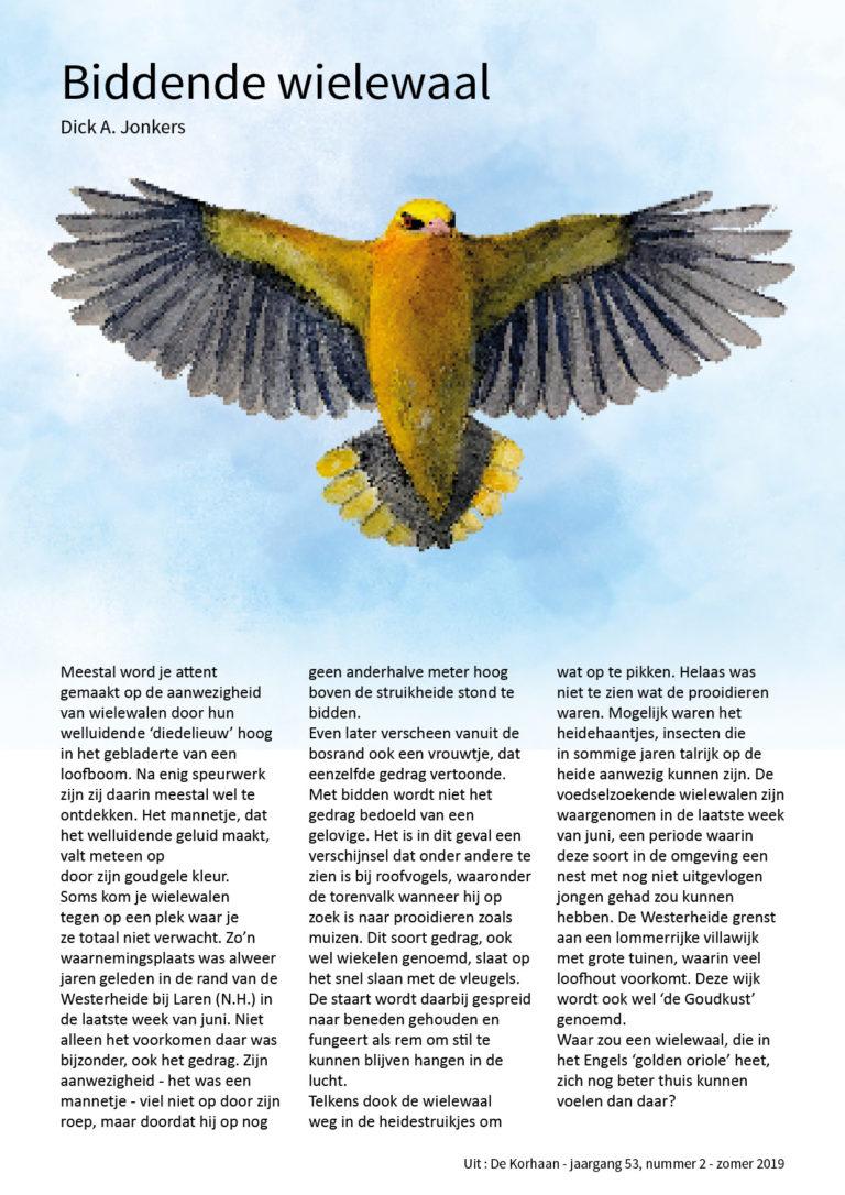 wielewaal-biddend-oriolus-golden-oriole-praying-illustration-bird-vogel-watercolour-aquarel-illustratie-doortje.nl