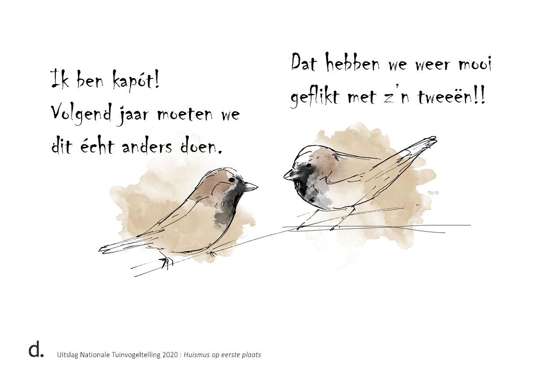 twee huismussen zijn doodop na vogeltelling